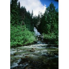 Rockies River Canada