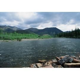 Rockies River Canada 1