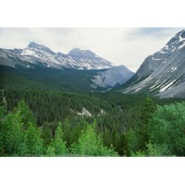 Rockies Mountain Canada 2