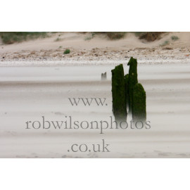 Titchwell Beach in the wind