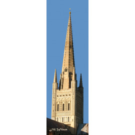 Cathedral Spire, Norwich
